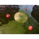 SKIMCRUSH LIGHT 7 pour Pompage lentilles d'eau azolla